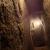 Levon's Devine Underground